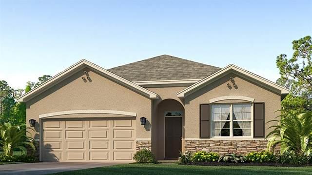 17321 Reserva Drive, Bradenton, FL 34211 (MLS #T3327209) :: Zarghami Group