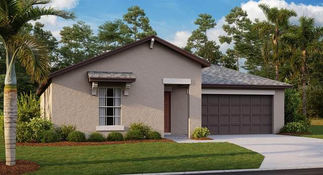 2526 SW 167TH Loop, Ocala, FL 34473 (MLS #T3327230) :: RE/MAX Elite Realty