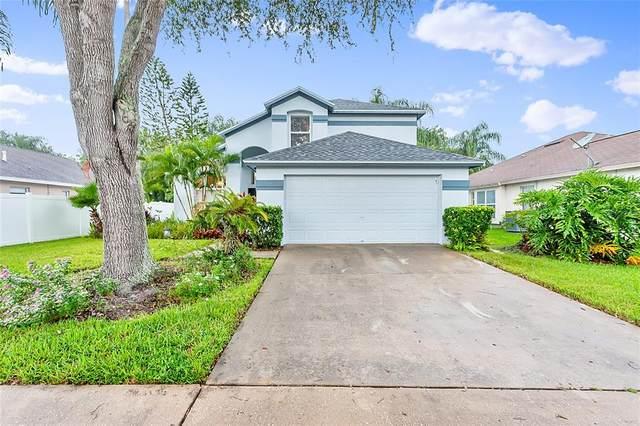 1249 Big Sky Drive, Wesley Chapel, FL 33543 (MLS #T3327312) :: Zarghami Group