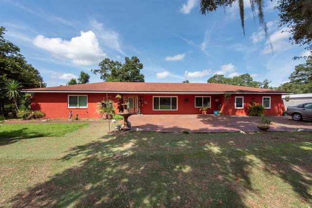 9822 Gallagher Road, Dover, FL 33527 (MLS #T3327321) :: Zarghami Group