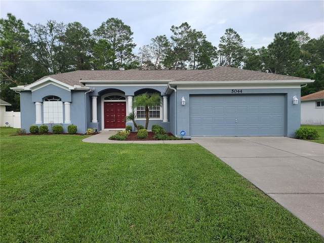 5044 Abagail Drive, Spring Hill, FL 34608 (MLS #T3327327) :: Cartwright Realty
