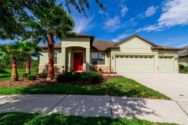 20011 Outpost Point Drive, Tampa, FL 33647 (MLS #T3327389) :: Team Bohannon