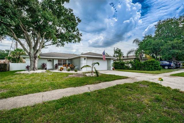 3433 Merlin Drive, Clearwater, FL 33761 (MLS #T3327413) :: Zarghami Group