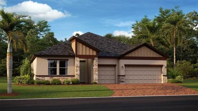 Ocala, FL 34480 :: Keller Williams Realty Select