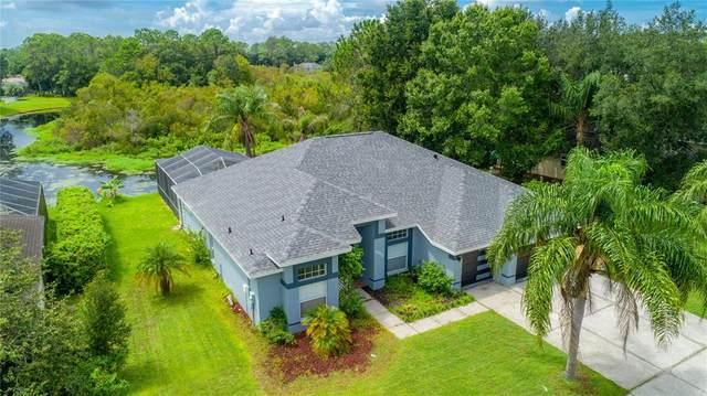 5203 Halstead Lane, Zephyrhills, FL 33541 (MLS #T3327444) :: Vacasa Real Estate