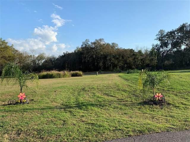 3017 Beautiful Creek Lane, Plant City, FL 33565 (MLS #T3327460) :: Zarghami Group