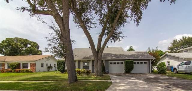 8417 Flagstone Drive, Tampa, FL 33615 (MLS #T3327524) :: Zarghami Group