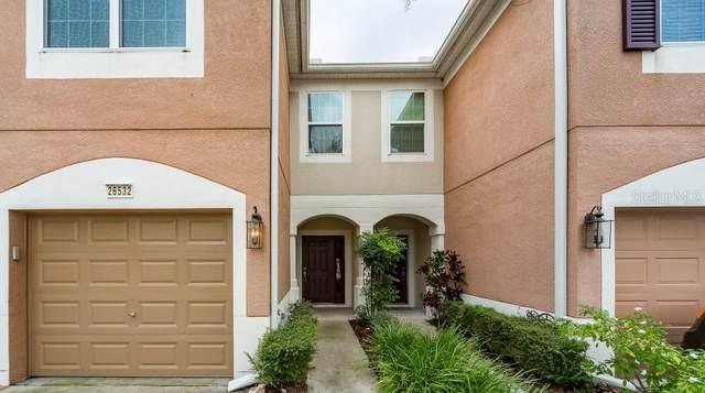 26532 Castleview Way, Wesley Chapel, FL 33544 (MLS #T3327525) :: Cartwright Realty