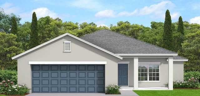 000 Simberg Street, North Port, FL 34291 (MLS #T3327543) :: MVP Realty