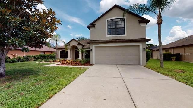 14918 Princewood Lane, Land O Lakes, FL 34638 (MLS #T3327548) :: Zarghami Group