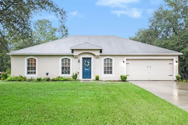 1491 W Pringle Place, Citrus Springs, FL 34434 (MLS #T3327589) :: Your Florida House Team