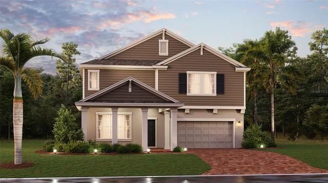 6983 Perch Hammock Loop, Groveland, FL 34736 (MLS #T3327642) :: Everlane Realty