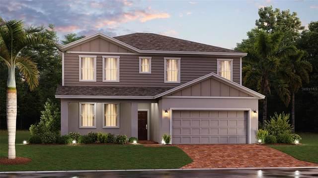6805 Perch Hammock Loop, Groveland, FL 34736 (MLS #T3327652) :: Everlane Realty