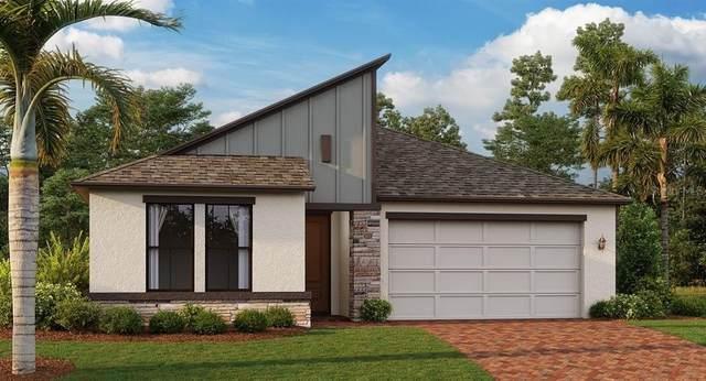 9761 Coneflower Court, Land O Lakes, FL 34637 (MLS #T3327664) :: Team Turner