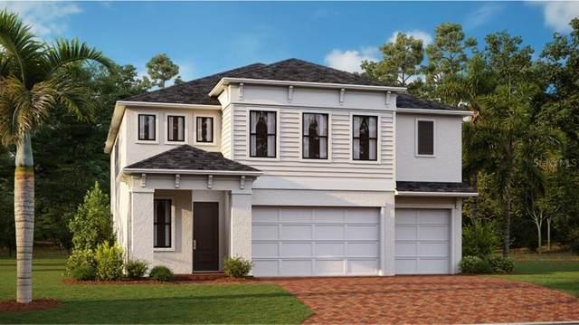 21704 Violet Periwinkle Drive, Land O Lakes, FL 34637 (MLS #T3327669) :: Zarghami Group