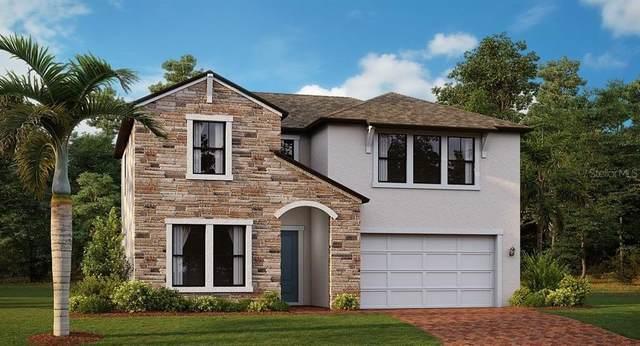 21712 Violet Periwinkle Drive, Land O Lakes, FL 34637 (MLS #T3327683) :: Zarghami Group