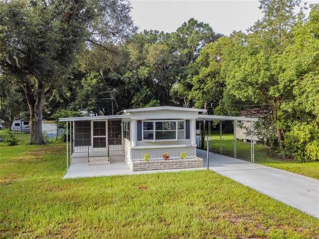 37202 Belford Court, Zephyrhills, FL 33541 (MLS #T3327712) :: SunCoast Home Experts