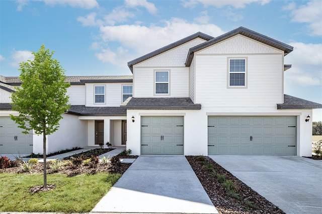 5334 Companion Lane, Tampa, FL 33619 (MLS #T3327794) :: Cartwright Realty
