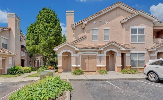 17956 Villa Creek Drive #17956, Tampa, FL 33647 (MLS #T3327964) :: Cartwright Realty