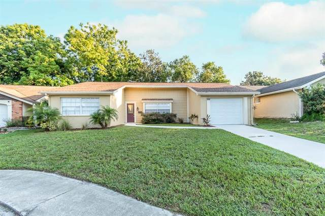8023 Hunters Whip Row, Hudson, FL 34667 (MLS #T3328015) :: The Curlings Group