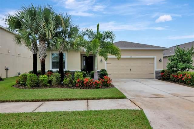 6417 Triton Lane, Apollo Beach, FL 33572 (MLS #T3328035) :: Cartwright Realty