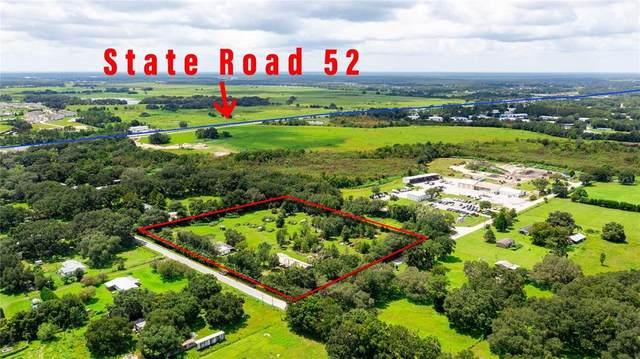 11939 Emmaus Cemetery Road, San Antonio, FL 33576 (MLS #T3328086) :: Your Florida House Team