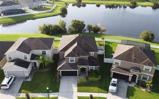 13132 Royal Pines Avenue, Riverview, FL 33579 (MLS #T3328094) :: Zarghami Group