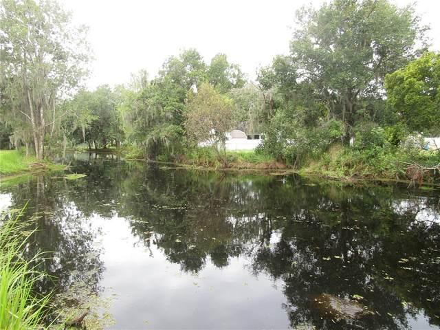 6004 Harwell Estates Drive, Dover, FL 33527 (MLS #T3328103) :: Zarghami Group