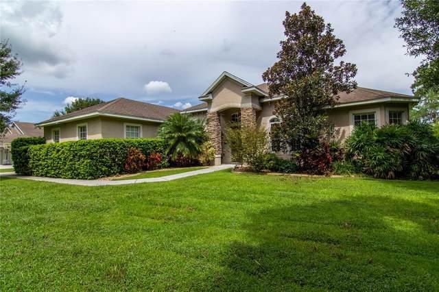 2822 Nesmith Estates Lane, Plant City, FL 33566 (MLS #T3328133) :: Zarghami Group