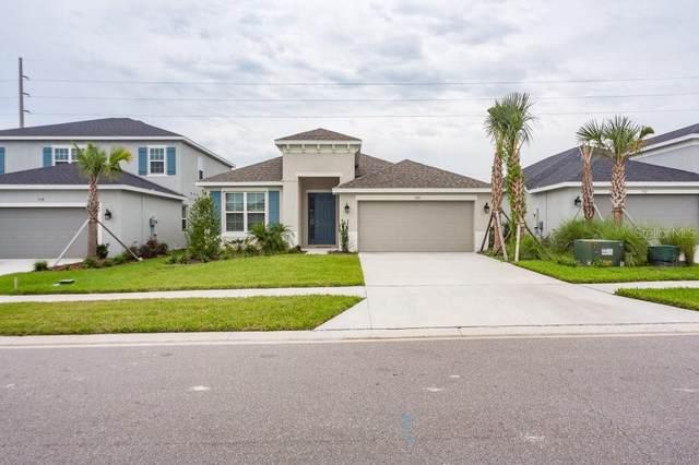 7110 Wesley Palm Way, Wesley Chapel, FL 33545 (MLS #T3328162) :: Zarghami Group