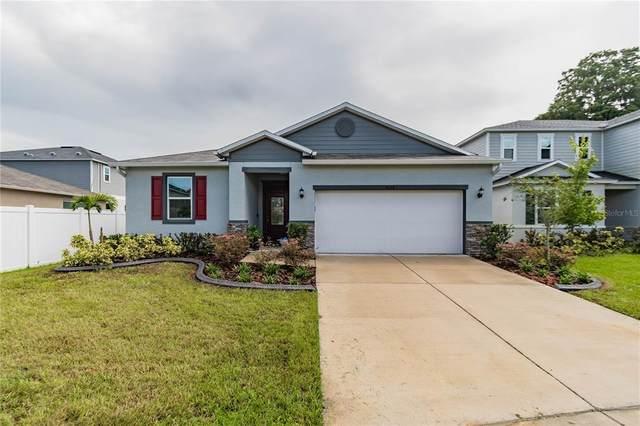 9333 Equity Lane, Seffner, FL 33584 (MLS #T3328227) :: Zarghami Group