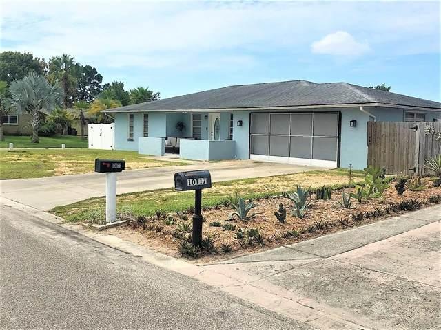 10111 Gardenia Lane, Port Richey, FL 34668 (MLS #T3328252) :: Zarghami Group