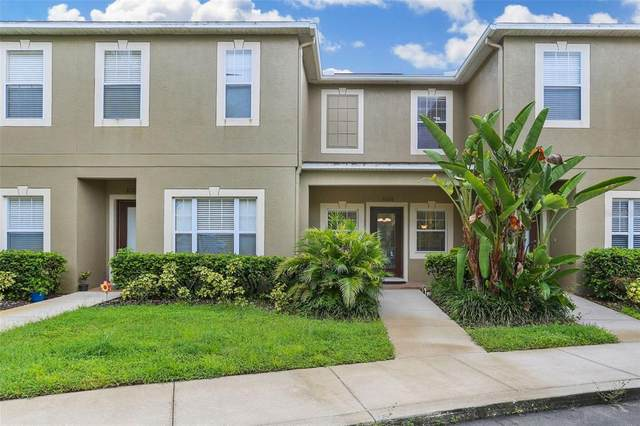 31218 Flannery Court, Wesley Chapel, FL 33543 (MLS #T3328270) :: Zarghami Group