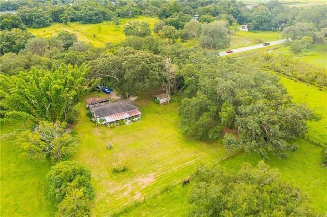2330 N Valrico Road, Seffner, FL 33584 (MLS #T3328303) :: Everlane Realty