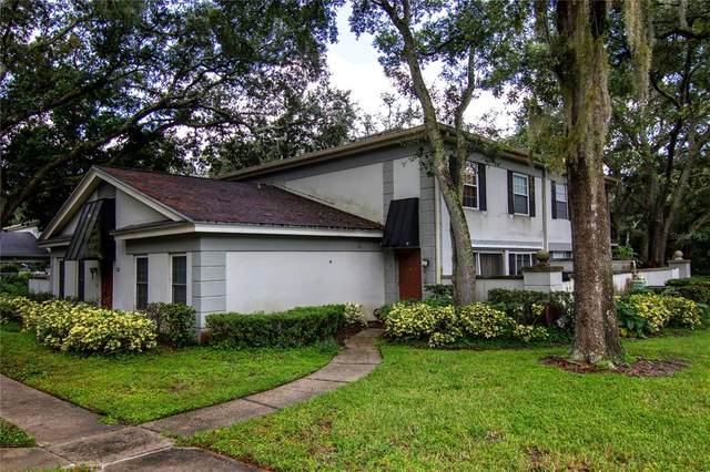 6210 Dewdrop Way, Temple Terrace, FL 33617 (MLS #T3328339) :: Zarghami Group