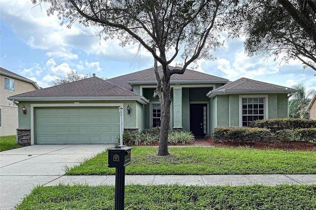 17205 Keely Drive, Tampa, FL 33647 (MLS #T3328345) :: Zarghami Group