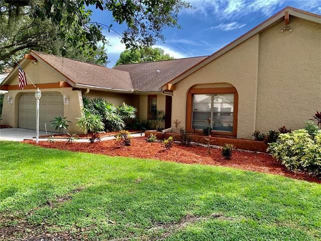 13610 Heritage Way, Tampa, FL 33613 (MLS #T3328348) :: Florida Real Estate Sellers at Keller Williams Realty