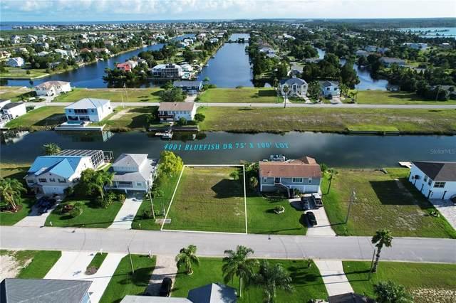 4001 Bluefish Drive, Hernando Beach, FL 34607 (MLS #T3328375) :: Zarghami Group