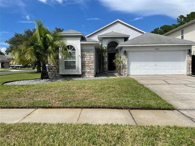 12533 Deerberry Lane, Tampa, FL 33626 (MLS #T3328386) :: Carmena and Associates Realty Group