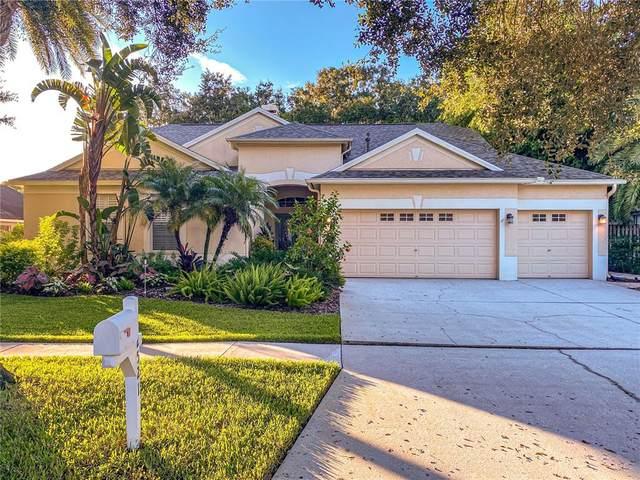12521 River Birch Drive, Riverview, FL 33569 (MLS #T3328487) :: Cartwright Realty