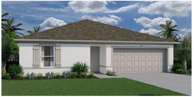 421 Patricia Alford Drive, Haines City, FL 33844 (MLS #T3328491) :: Zarghami Group