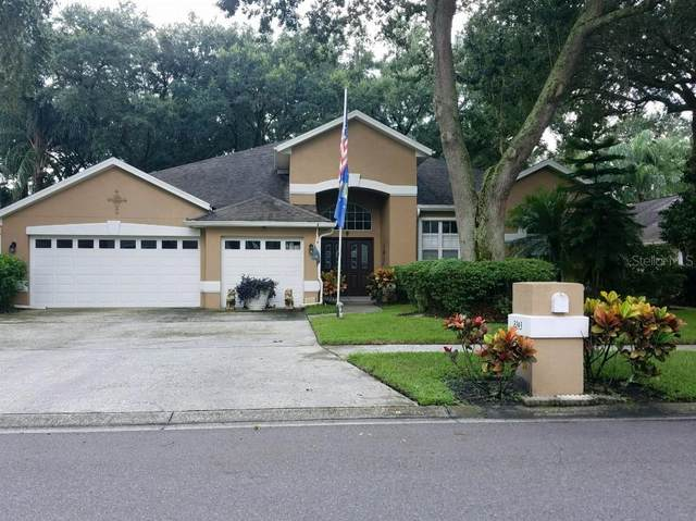 2243 Eagle Bluff Drive, Valrico, FL 33596 (MLS #T3328534) :: Everlane Realty