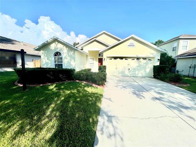 2952 Hickory Grove Drive, Valrico, FL 33596 (MLS #T3328590) :: Cartwright Realty