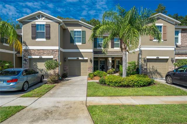 12428 Streamdale Drive, Tampa, FL 33626 (MLS #T3328626) :: Vacasa Real Estate