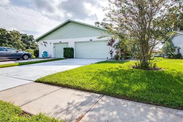 3203 Mcmath Drive, Palm Harbor, FL 34684 (MLS #T3328668) :: Cartwright Realty