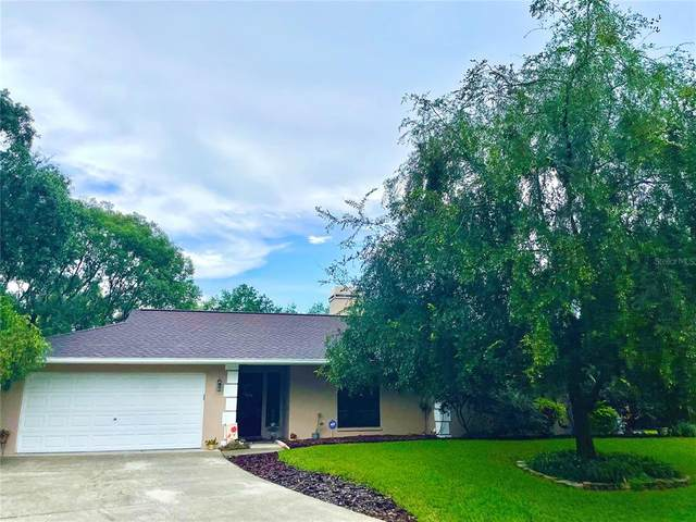 23147 Lucerne Place, Land O Lakes, FL 34639 (MLS #T3328689) :: Your Florida House Team