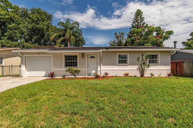 11135 Temple Avenue, Seminole, FL 33772 (MLS #T3328690) :: Cartwright Realty