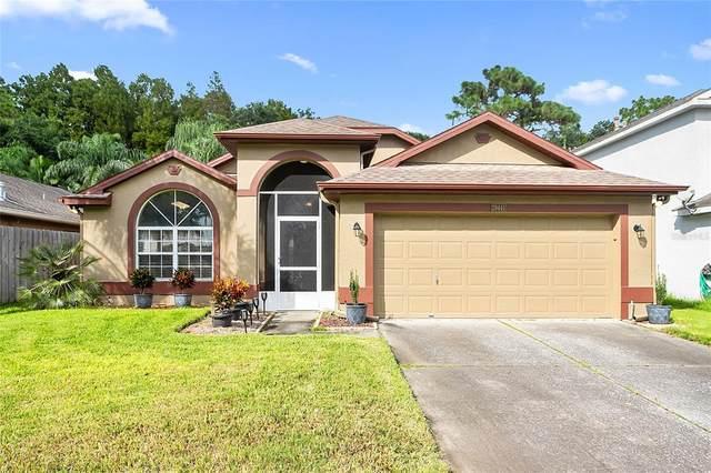 29441 Birds Eye Drive, Wesley Chapel, FL 33543 (MLS #T3328694) :: Zarghami Group