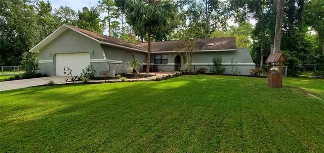 1505 Don Jr Avenue, Brooksville, FL 34601 (MLS #T3328698) :: Vacasa Real Estate