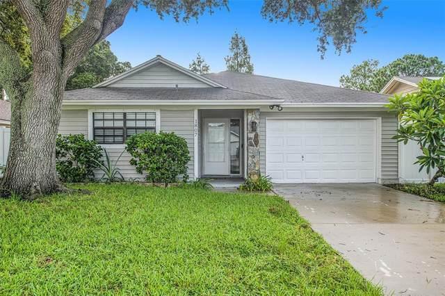1807 Tall Pines Drive, Largo, FL 33771 (MLS #T3328783) :: Zarghami Group